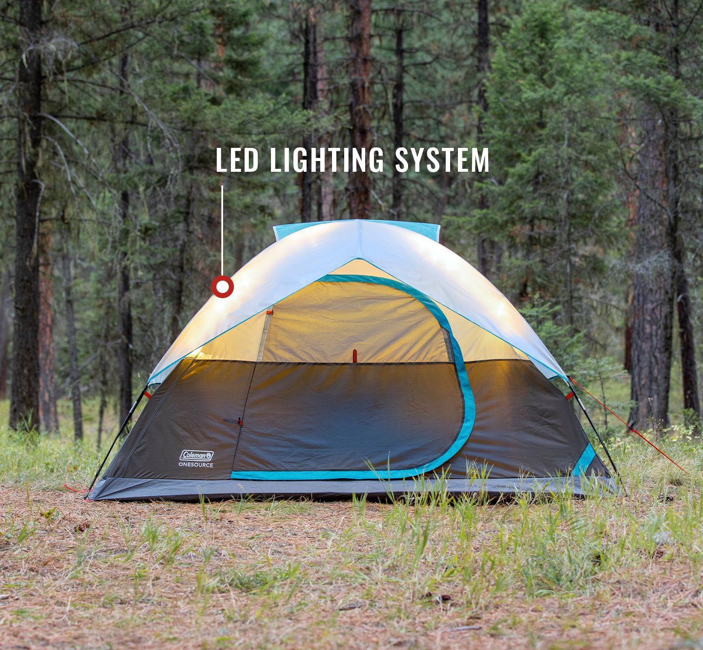 One source tent with LED lighting system